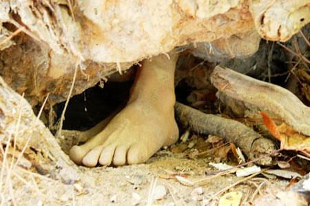 FootlooseCache