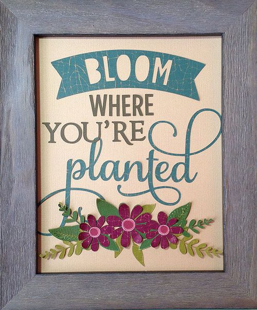 Bloom-Frame_SuzannaLee