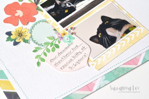SweetBelle_StuckMar15Guest_Close_SuzannaLee