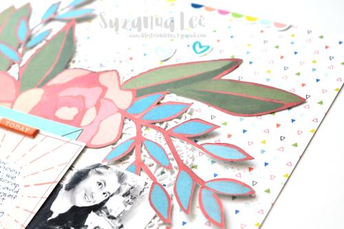 Lapcat_Apr17CD_Close4_SuzannaLee