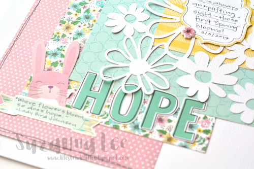 Hope_CS304_Close_SuzannaLee