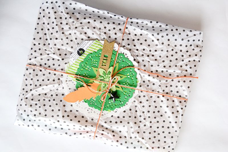 March_StPaddys_PocketLetter_Packaging_SuzannaLee