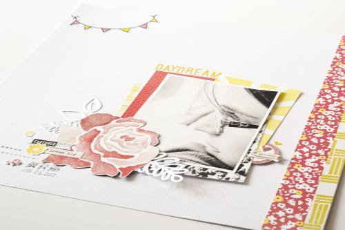 Daydream_FullClose_Feb17CD_SuzannaLee