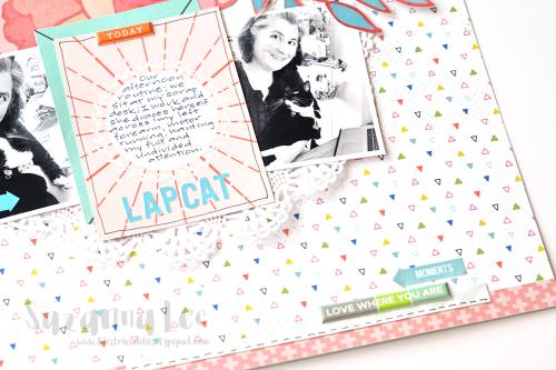 Lapcat_Apr17CD_Close3_SuzannaLee