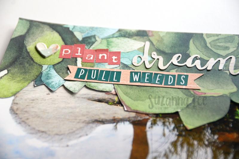 PlantDreams_Oct17CD_Close_SuzannaLee