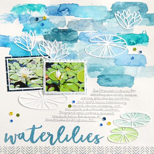Waterlilies_SMSSep7_SuzannaLee
