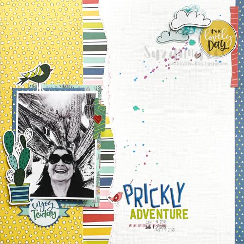 PricklyAdventures_PhotoPlay_TSRAug18_SuzannaLee