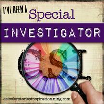 CSI Special Investigator