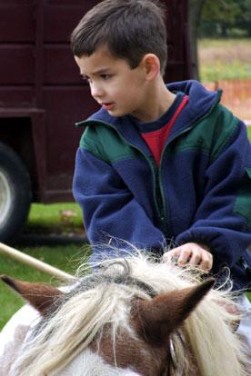 Ponyride