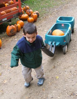 Pumpkinporting
