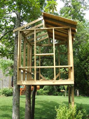 Treehouse620
